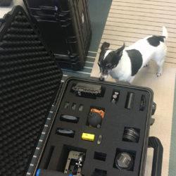 Filmequipment und ein Hund