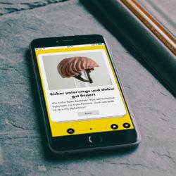 Ein Handy liegt auf einem Schreibtisch, auf dem Display ist ein Screen aus der Good News App zu sehen